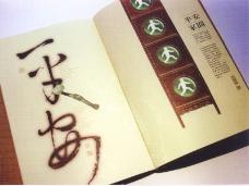 中国书籍装帧设计0195