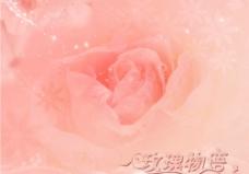 浪漫温馨婚纱背景图片