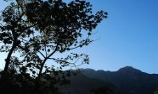 雁荡山悬崖图片