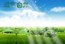 绿色自然图片