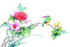 花鸟国画0088