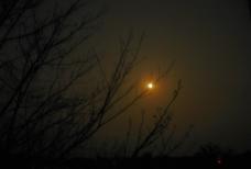 月光昏黄图片
