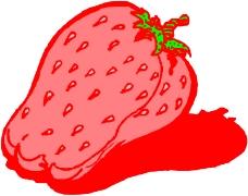 蔬菜水果1447