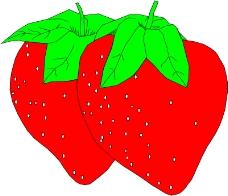 蔬菜水果1012