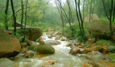 莲清山水图片