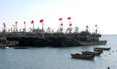 渔港新年图片