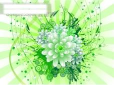 矢量花卉花朵线条
