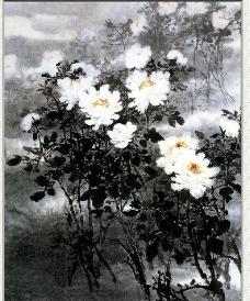 美丽国画白牡丹图片