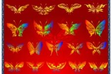 精美矢量蝴蝶花纹图片