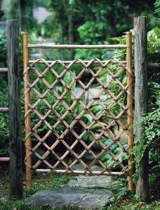 庭園中的竹籬图片