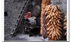 玉米串图片