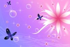 蝴蝶花语图片
