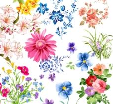 花纹集图片