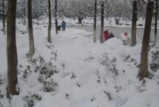 雪和游人图片