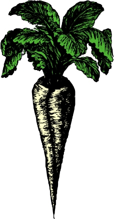 蔬菜水果2130