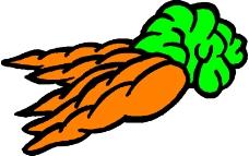 蔬菜水果1774