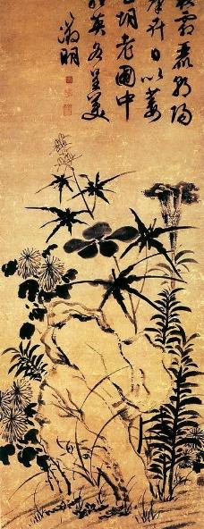 秋花图图片