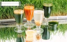 玻璃杯 果汁